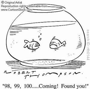 Hide And Go Seek Fish