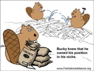 Beaver's Niche